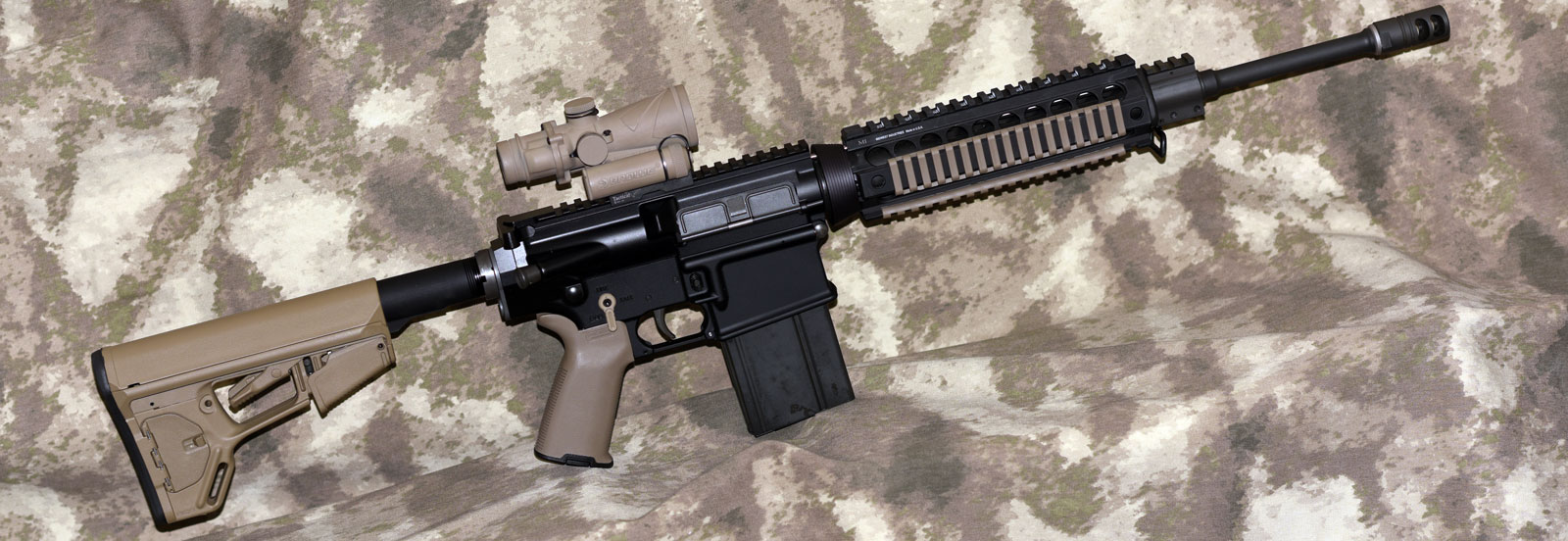 Picture of my Armalite AR-10