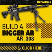 Build a  AR 15 in 308