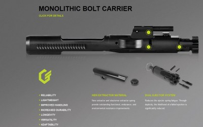 DPMS G2 308 INNOVATION or JUST DIFFERENT
