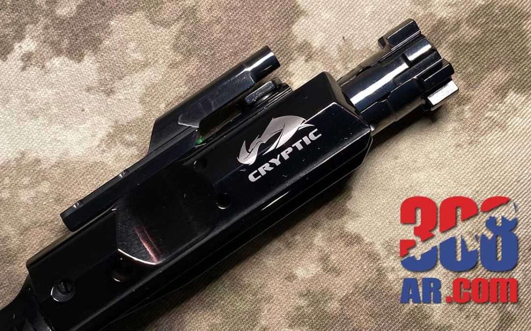 Cryptic Coatings Mystic Black Bolt Carrier Group